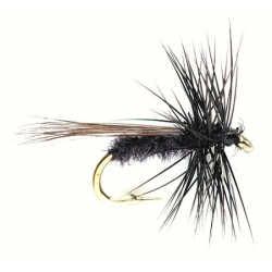 Mini sedge black