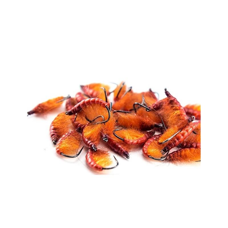 Nymphe tchèque orange