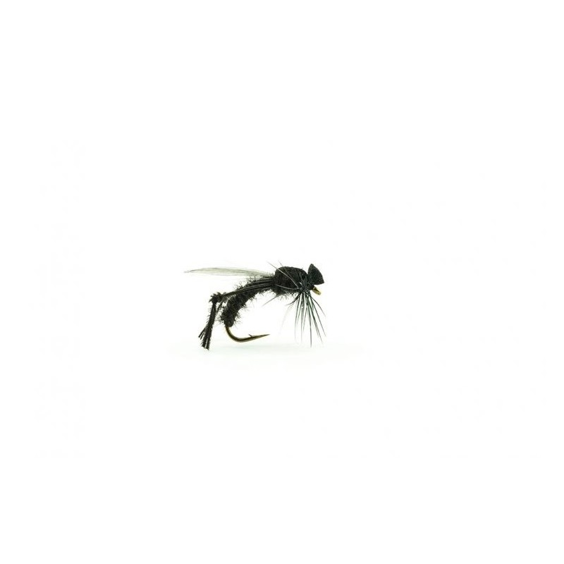 Bibio mouche de St Marc Devaux JBBM01